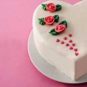 Rose Day Cakes